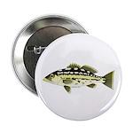 "Calico Kelp Bass fish 2.25"" Button"