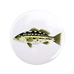 """Calico Kelp Bass fish 3.5"""" Button (100 pack)"""