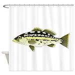 Calico Kelp Bass fish Shower Curtain