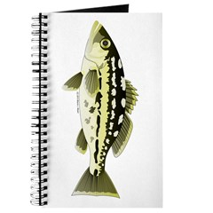 Calico Kelp Bass fish Journal
