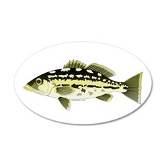 Calico Kelp Bass fish Wall Decal