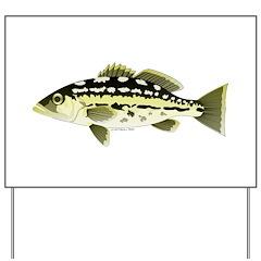 Calico Kelp Bass fish Yard Sign