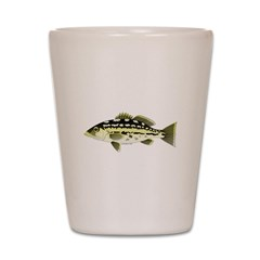 Calico Kelp Bass fish Shot Glass