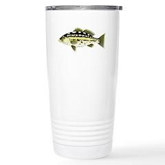 Calico Kelp Bass fish Travel Mug