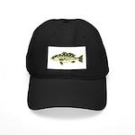 Calico Kelp Bass fish Baseball Hat