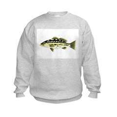 Calico Kelp Bass fish Sweatshirt