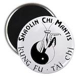SCM Magnet 1
