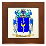 Bialowice Framed Tile