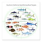 Southern California Sportfishing Targets Square Ca