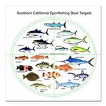 Southern California Sportfishing Targets Square Ca