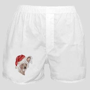 Christmas Chinese Crested dog Boxer Shorts