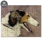 Zoi Profile Puzzle