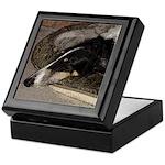 Sleeping Borzoi Trinket Box