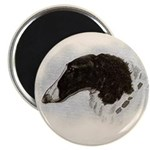 Perchino Head Magnet