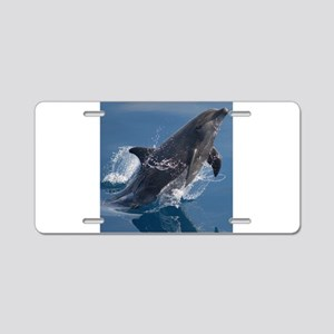 Jumping Dolphin Aluminum License Plate