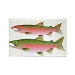 Pacific Coho Salmon fish couple Rectangle Magnet (
