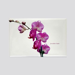 Orchid Spray White copy Rectangle Magnet