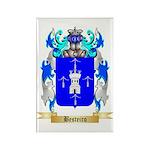 Besteiro Rectangle Magnet (100 pack)