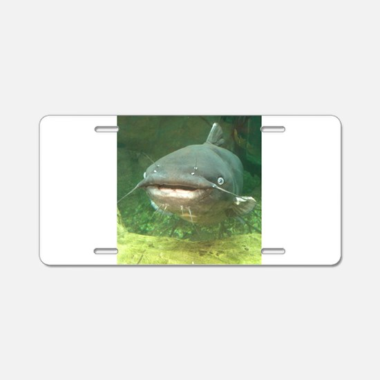 Curious Catfish Aluminum License Plate