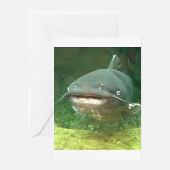 Curious Catfish Greeting Card
