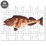 Lingcod fish Puzzle