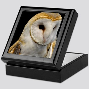 Barney The Barn Owl Keepsake Box