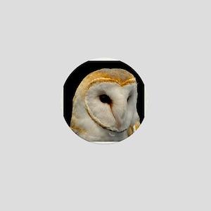 Barney The Barn Owl Mini Button