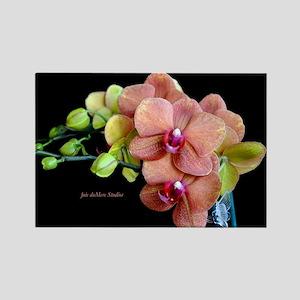 Orange Orchids 2 Rectangle Magnet