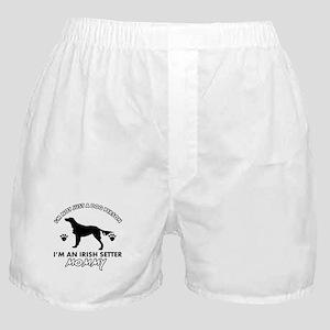 Irish Setter dog breed design Boxer Shorts