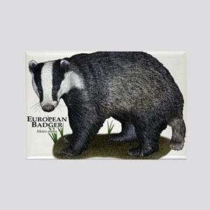 European Badger Rectangle Magnet