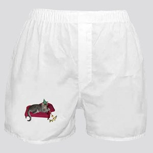 Cat on Couch Boxer Shorts