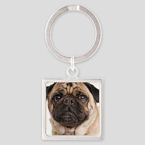 Pug Close-Up Keychains