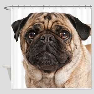 Pug Close-Up Shower Curtain