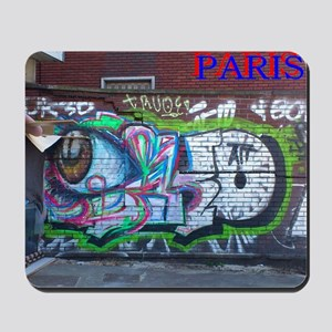 Wall spray painting art in Paris (Seine) 12 Mousep
