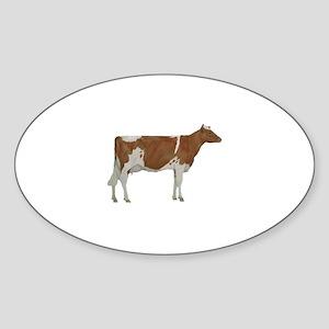 Guernsey Milk Cow Sticker (Oval)
