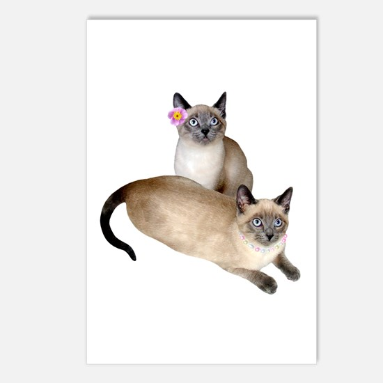 Siamese Sister Kittens Postcards (Package of 8)