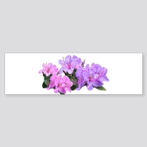 Purple azalea flowers Bumper Sticker