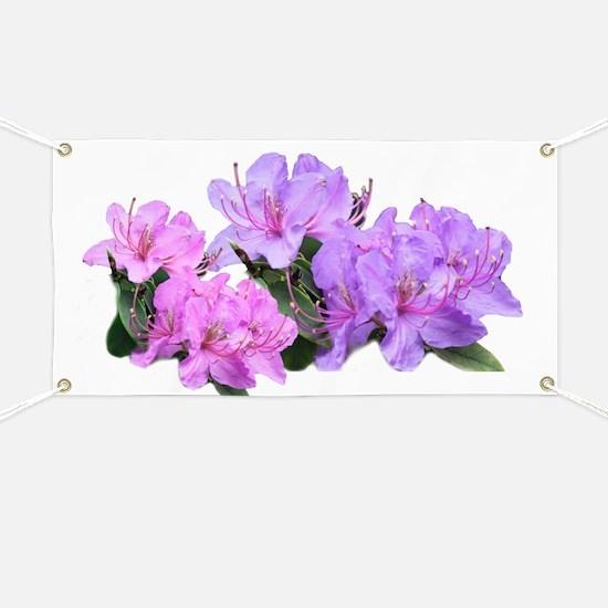Purple azalea flowers Banner