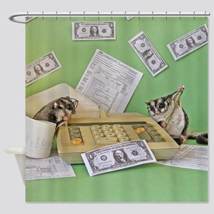Taxes Shower Curtain