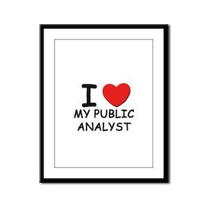 I love public analysts Framed Panel Print