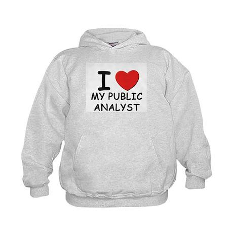 I love public analysts Kids Hoodie