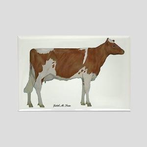 Guernsey Milk Cow Rectangle Magnet