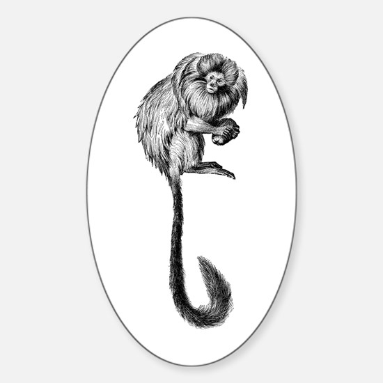 Golden Lion Marmoset 1 Oval Decal