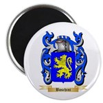 Boschini Magnet