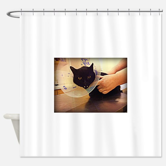 Cone of Shame Shower Curtain