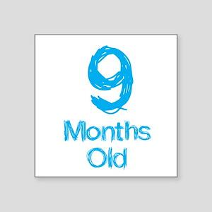9 Months Old Baby Milestone Sticker