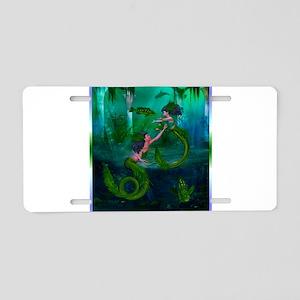 Image1 Aluminum License Plate