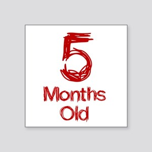5 Months Old Baby Milestones Sticker