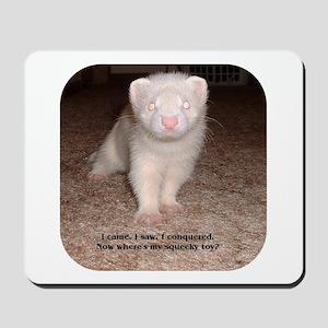 Ferret Mousepad