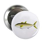 Greater Amberjack fish 2.25
